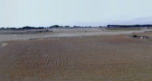 Terreno en Biota de 10 ha